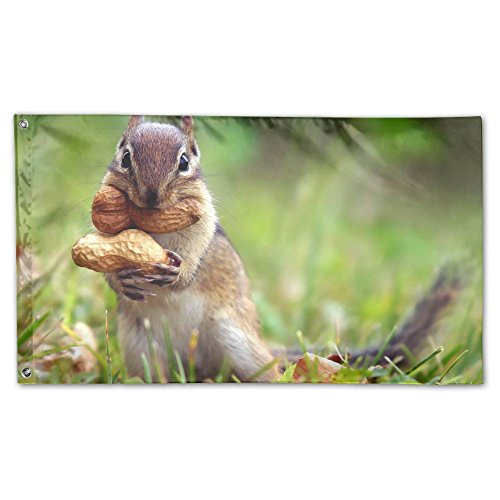 YUANSHAN Home Garden Flag Funny Squirrel Eat Peanuts Polyest