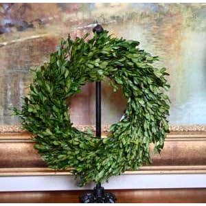 "Preserved Garden Boxwood Wreath 14"" 2"