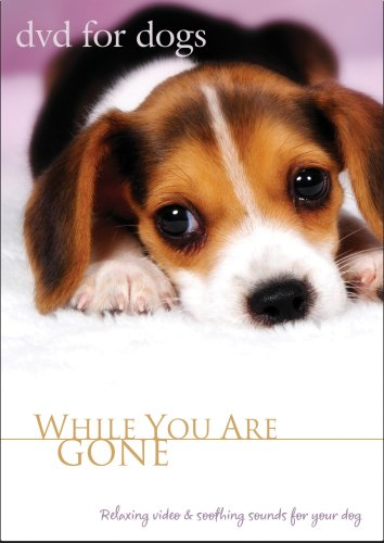 (DVD For Dogs : While You Are Gone)