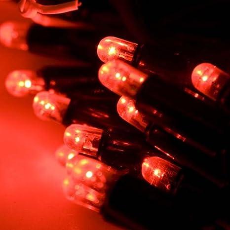 Prilux - Led string plus 12m 180 leds rojo capsula claro: Amazon.es: Iluminación