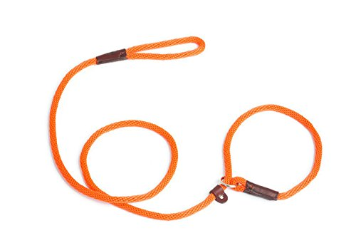 Slip Lead Dog Leash for Pet Training by Cesar Millan Rover on Main Dog Products Made in the USA