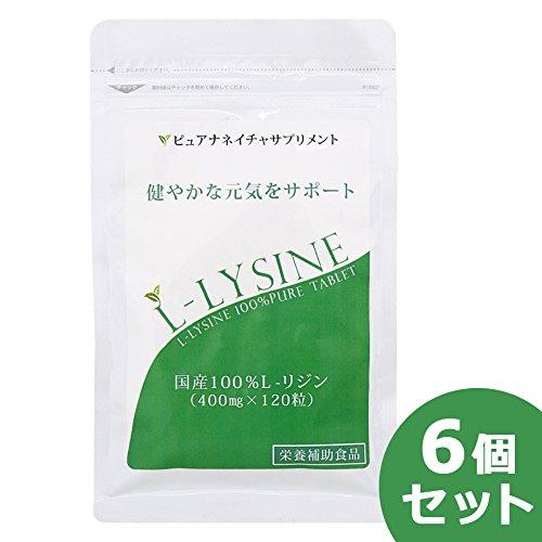 国産 L-リジン 6袋セット (720粒 約6か月分) B0764H4C2F