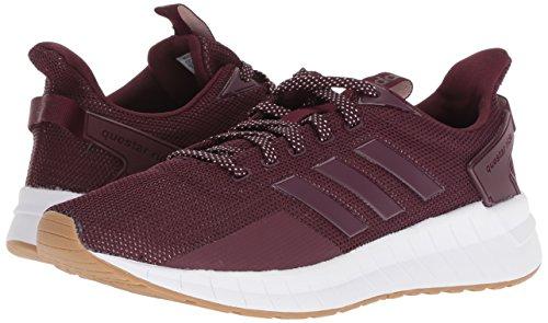 d1e6a6c5bf8b0 adidas Women's Questar Ride Running Shoe, Maroon/Gum, 10 M US