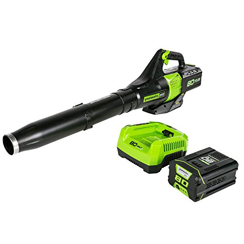 (Greenworks PRO 80V 145 MPH - 580 CFM Cordless Jet Blower, 2.5 AH Battery Included BL80L2510)