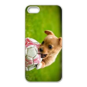 Red Dog Playing Ball Game Hight Quality Plastic Case for Iphone 5s