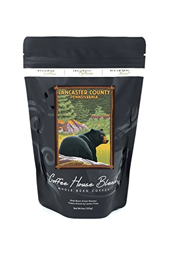 Lancaster County, Pennsylvania - Black Bear in Forest (8oz Whole Bean Small Batch Artisan Coffee - Bold & Strong Medium Dark Roast w/ Artwork) (Lancaster Black Wall Lantern)
