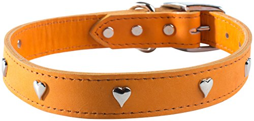OmniPet Signature Leather Dog Collar with Heart Ornaments, Mandarin, 24