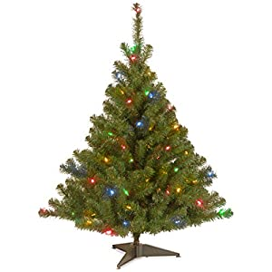 National Tree Kincaid Spruce Tree with Multicolor Lights 81