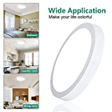 W-LITE 11.81 Inch Round LED Ceiling Lights Fixture