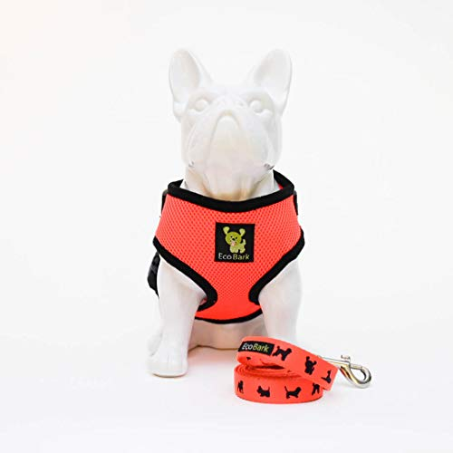 EcoBark Dog Harness and Matching Leash Combo Set; Soft Double Padded, Fully Adjustable Neck and Tummy for Small and Medium Dogs. (Small, Orange)