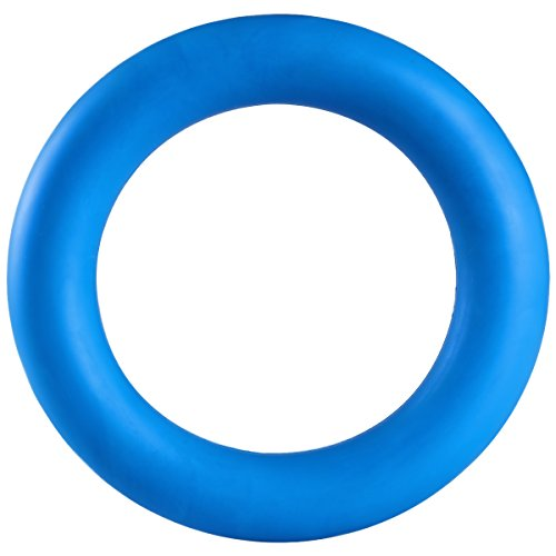Dog Chew Toys, ATESSON Tough Rubber Ring for Puppies Small Medium Breeds, Bouncy and Resilient for Interactive Tugging Retrieve, 6 Inch, Blue
