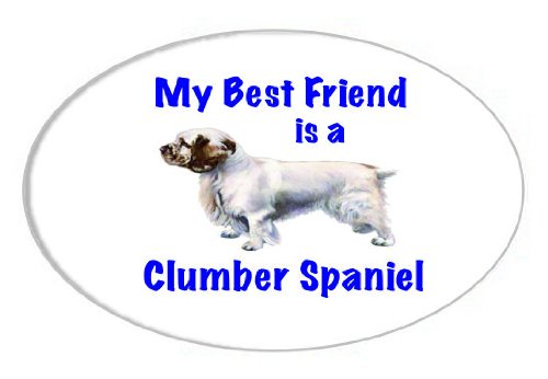 My Best Friend is Clumber Spaniel Oval Magnet