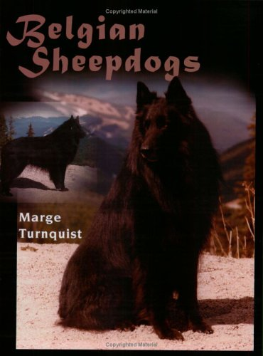 Belgian Sheepdogs