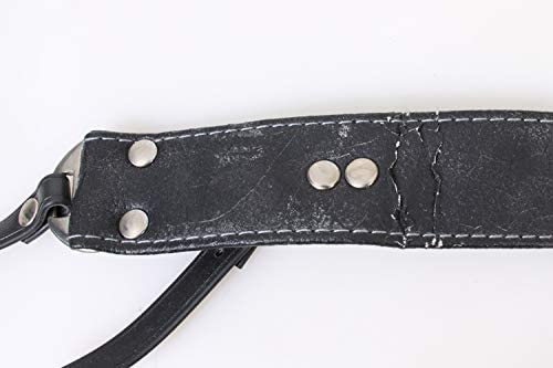 Camera Strap Holds Two Cameras
