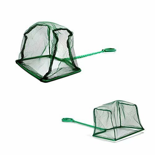 (Pawfly 6 Inch Aquarium Fish Net Large Nylon Fishing Nets with Plastic Handle for Fish Tank, Green)