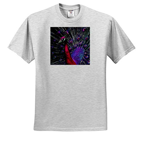 3dRose Stamp City - Abstract - Abstract Photograph of a Peacock in Bright Pink and Purple. - Toddler Birch-Gray-T-Shirt (3T) (ts_319086_32) ()