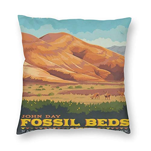 John Day Fossil Beds National Monument Oregon Pillowslip Unique Throw Pillow Cover Creative Cushions Case Covers with Zipper Home Decorative Print Pillowcase for Sofa Couch (John Day Fossil Beds National Monument Oregon)