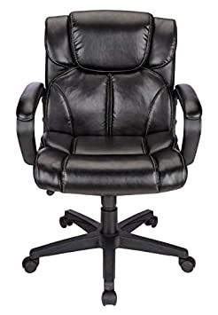 Brenton Studio Briessa Vinyl Mid-Back Chair, Black
