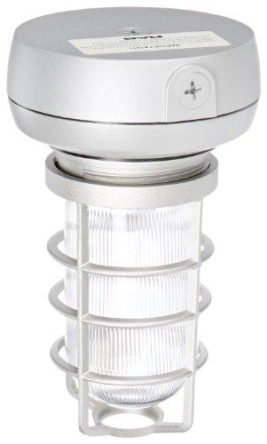 (RAB Lighting VX1F26 Vaporproof Ceiling Fixture CFL Lamp with Clear Prismatic Glass Globe, Triple Type, Aluminum, 26W Power, 1800 Lumens, 277V, 1/2