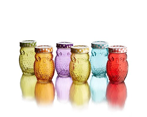 Emenest Owl Shape Glass Jars - Set of 6, Colored, with Gingham Lids (14 Oz.) Red, Blue Orange, Yellow, Green, Purple by Emenest