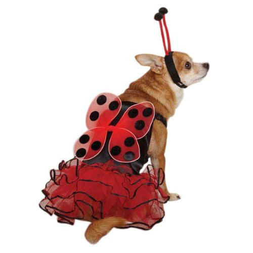 Lucky Bug Dog Costume Size: X-Small (10