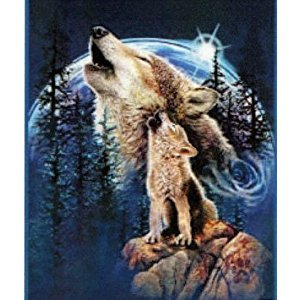 Harmony of Wolves Blanket