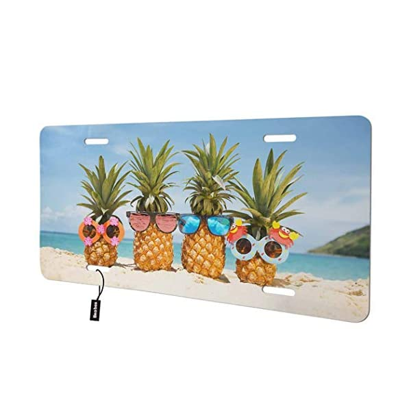Pineapples-with-Sunglasses-Front-License-Plate-CoverOcean
