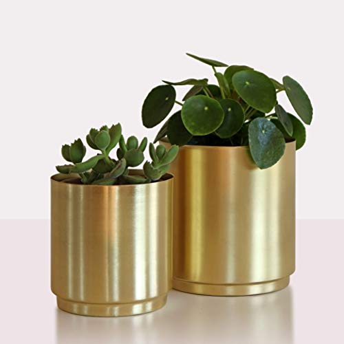 Brass Metal Planters - Set of Two Flower Pots | Modern Gold Indoor Plant Pots, 5