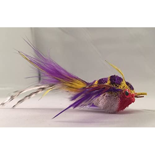 "best Litterboy Bird Series Cat Toys ""Purple Thriller"" Bird Attachment/refill - Fits Da Bird, Cat Catcher, Clarion Baton and Flying Frenzy Pole Toys"