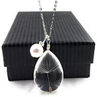 "Popular Dandelion Wish Pendant Necklace with Swarovski Crystal Pearl Charm on 18"" Sterling Silver Chain with Silver Plated Extension Perfect Gift, Mother's Day, Easter, Spring Break"