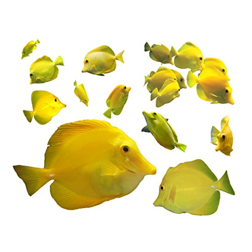 (12 Tropical Fish Decals - Yellow Tang Wall Decal Set - Zebrasoma flavescens - Sizes shown on example image)