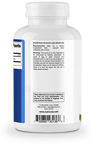 Nutricost Ginkgo Biloba 120mg, 240 Capsules - Extra Strength Ginkgo Biloba Extract - Gluten Free & Non-GMO