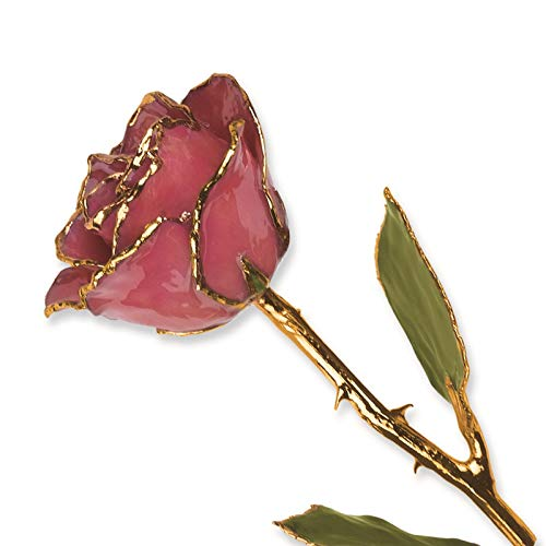 (Venture Collections Dusty Pink Lacquer Dipped 24K Gold Trimmed Genuine Rose w/Green Leaves Stem in Gift Box)