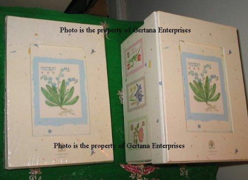 Garden Days Judith Glover Photo Storage Box