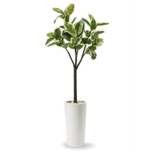GREENPARK ウィルデマニアーナ エコストーン プランターH50 造花 フェイクグリーン B07D6GGCFB