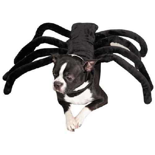Grr-antula Costume