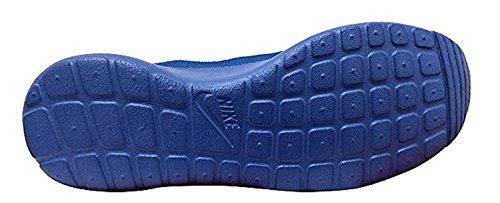 Shoe Nike Nike Mens Running Shoe Mens Nike Rosherun Rosherun Running vxnq14n