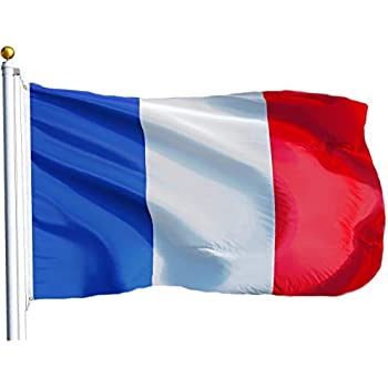 Image result for small french flag   smiley
