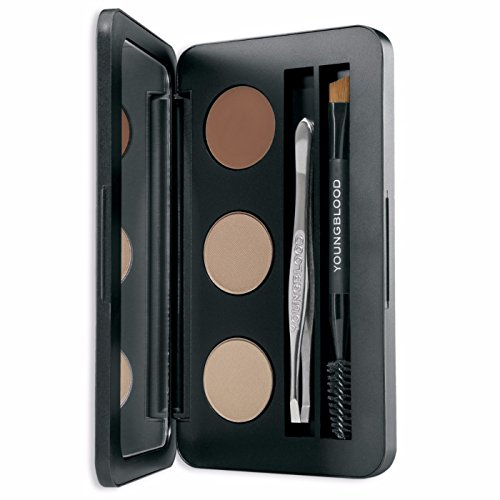 Youngblood Brow Artiste Kit, Blonde, 3 Gram (Kit For Brows Have Must)