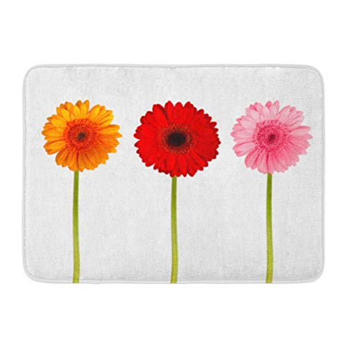 - Koperororo Doormats Bath Rugs Outdoor/Indoor Door Mat Red Spring Colorful Gerbers Flowers Pink Plant Summer Stem Daisy Bathroom Decor Rug 16