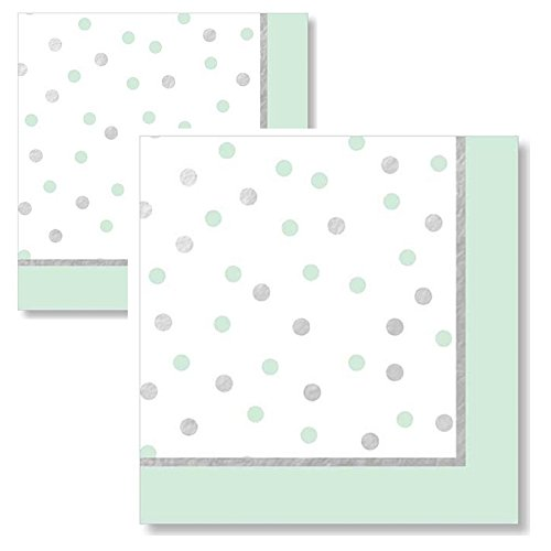 Mint Green and Silver Foil Cocktail Napkins Beverage Napkins Pack of 2 (40 Total Napkins)