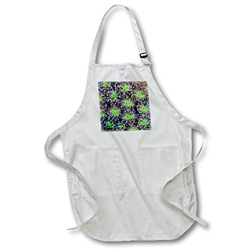 3dRose Danita Delimont - Marine life - Indonesia, West Papua. Patterns in soft coral. - Medium Length Apron with Pouch Pockets 22w x 24l (apr_276820_2) by 3dRose