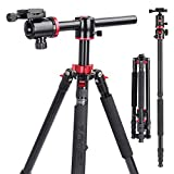 ZOMEI Camera Tripod,Overhead Tripod Professional Tripods 4 Section Horizontal Tripod with 360 Degree Ball Head Plate for Canon DSLR DV Scope Camcorder and Projector(72 inch) (M8-Black)