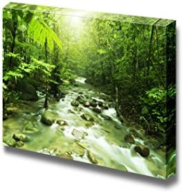 Tropical Mountain Stream with Sunbeam in a Morning Home Deoration Wall Decor