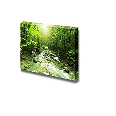 Canvas Prints Wall Art - Tropical Mountain Stream with Sunbeam in a Morning | Modern Home Deoration/Wall Art Giclee Printing Wrapped Canvas Art Ready to Hang - 24