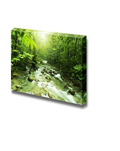 Tropical Mountain Stream with Sunbeam in a Morning Home Deoration Wall Decor ing