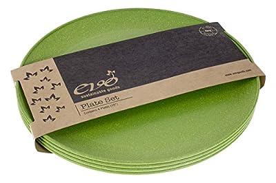 "EVO Sustainable Goods 10"" Plate"