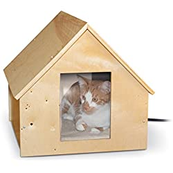 Keeping Outdoor Cats Warm Don T Let Harsh Winter Harm Your