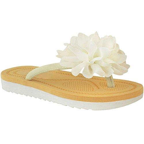 Fashion Thirsty Womens Flip Flops Sandals Flower Summer Toe Post Shoes Size 10 (Flower Flip Flop Sandals)