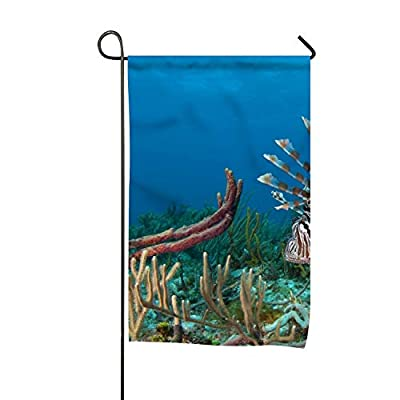 Dimanzo Animal Lionfish Seasonal Lawn Yard House Garden Flags 12 X 18 All-Weather Polyester Emblemize